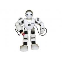 RC model ROBOT TEDDIES FOBOS česky hovoriaci